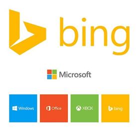 Expert-is-Me-Bing-Web-Analytics